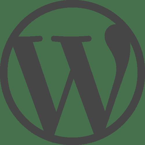 Wordpress Agentur 4